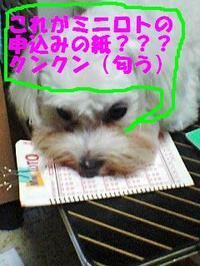 080713_190001_kunkunedited
