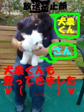 080906_165701_1inuizumi