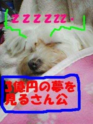 Pa0_01203okennzzz