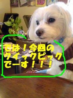 081201_115201_konnkaiedited_3