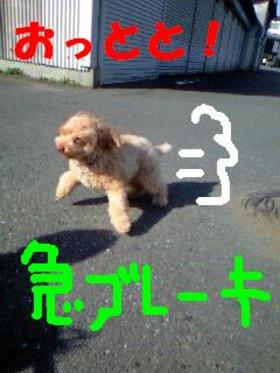 091104_09480001_kyuedited