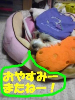100103_073201oyasumi
