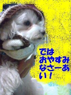 100108_183401oyasumi