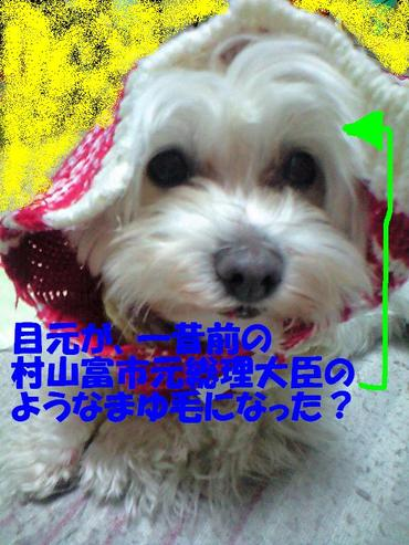 Ca3a0659_murayamaedited
