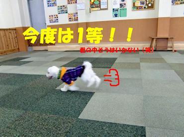 Cimg1181_yononakaedited