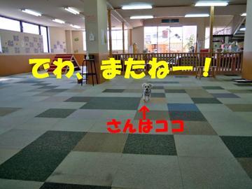Dscn0127_kokoedited