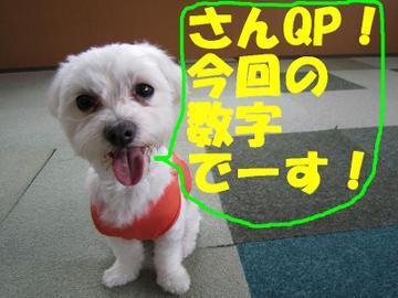 Img_0054suuji