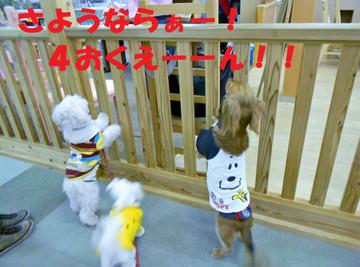 Dscn3211_editedyonoku