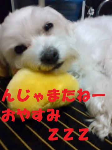 110520_222001oyasumi