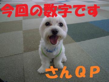 Dscn0473suuji