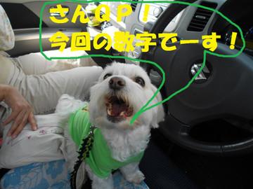 Dscn6322suuji_2