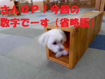 Dscn6412syouryakuban