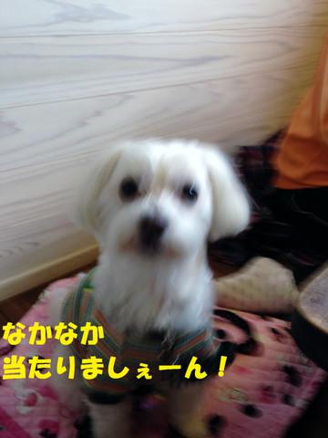 20131109_122955maseen