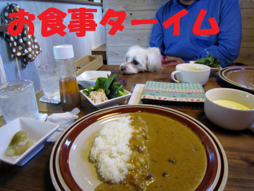Img_0782osyokuji